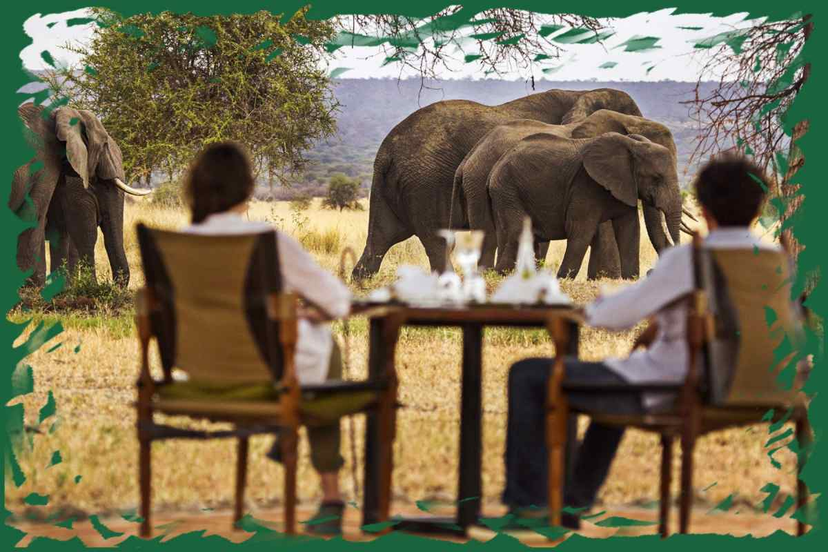 Breakfast on Safari
