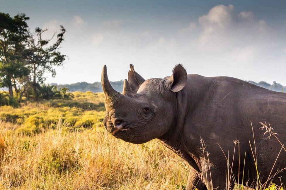 Samburu To Mara Package