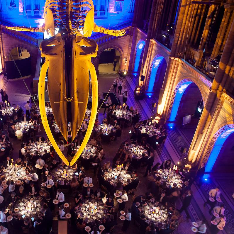 Exclusive Gala and Theme Dinners